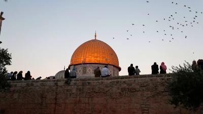 وزير الخارجية الأردني يبحث مع مسئول أممي الجهود الدولية لوقوف تنفيذ إسرائيل قرارها بضم أراض فلسطينية