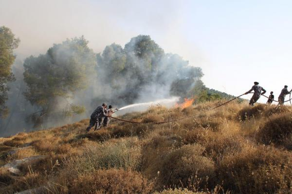 الاردن حريق بحديقة عامة في تلاع العلي