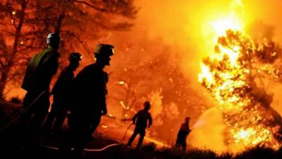 وفاة شخصين بحرائق للغابات في 10 ولايات جزائرية
