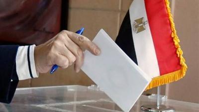 المصريون بالخارج يواصلون التصويت في ختام جولات انتخابات النواب