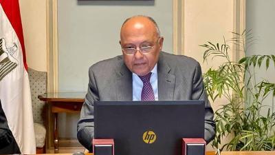 شكري أمام الجامعة العربية: فلسطين ستظل قضية العرب المركزية (نص الكلمة)